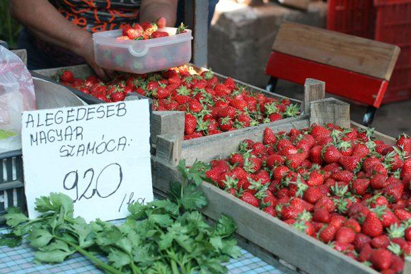 culinary tour budapest