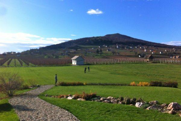 hungary wine tours